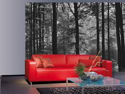 Wall Mural Forest Sunrise Wall Mystical Woodland Black And White Photography Nature 8 Sheet