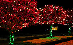 green outdoor christmas lights christmas lights red and green photograph by leeann mclanegoetz