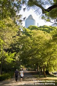 Botanic Gardens Brisbane City City Botanic Gardens Brisbane Tourist Guide Brisbane Australia