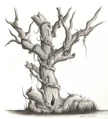 best 25 oak tree drawings ideas on tree drawings how