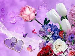 flowers wallpapers lyhyxx com