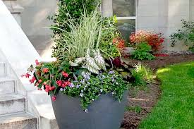 Self Watering Planters Our Customers Earthplanter Commercial Self Watering Planters