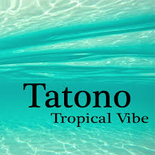 tropical photo album tatono tropical vibe tatono album