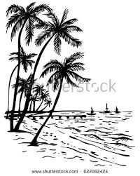 summer beach palm trees hand drawn stock vector 622162424