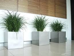 home design app cheats lily turf indoors home design app cheats fitnessarena club