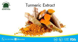 curcuma en cuisine turmeric extract