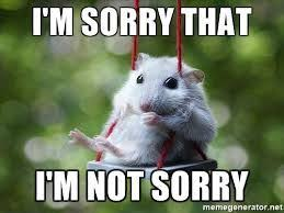 I Am Sorry Meme - best 21 i m sorry memes memes 21st and animal