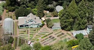Vegetable Garden Restaurant by Love Apple Farms Workshop Designing The Perfect Vegetable Garden