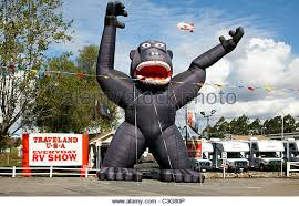 gorilla balloon gorilla advertising stock photos gorilla advertising stock