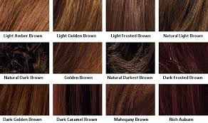 Creative L Shades Brown Hair Color Chart Hair And Pinterest Colour