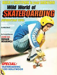 Backyard Skateboarding Vintage Skateboard Magazines