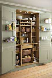 kitchen pantry doors ideas pantry cabinet cabinet pantry ideas with new kitchen closet