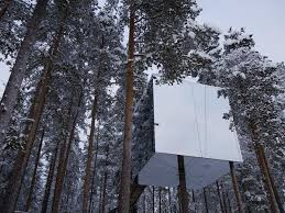 tree hotel sweden treehotel and northern lights holiday sweden helping dreamers do