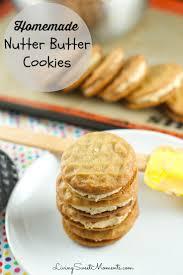 best 25 homemade peanut butter cookies ideas on pinterest
