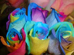 tie dye roses your birdie tie dye roses