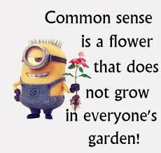 imagenes de minions con frases funny minions quotes of the week minions frases y chistes
