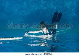mermaid stock photos u0026 mermaid stock images 8 alamy
