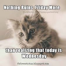 Today Is Friday Meme - nothing ruins friday more than realizing that today is wednesday