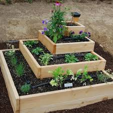 Small Vegetable Garden Ideas Pictures Simple Vegetable Garden Layouts Ideas Coexist Decors