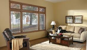 Photos Of Traditional Living Rooms by Casement Windows Traditional Living Room Minneapolis By
