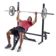 olympic bench press bar dimensions bench decoration