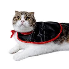 Kitten Halloween Costume Cheap Kitten Cosplay Aliexpress Alibaba Group