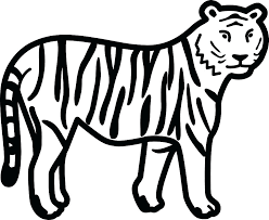 coloring page tigers coloring pages tiger free tiger coloring pages tigers coloring pages