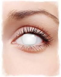 white contact lenses u2013 pure sclera prescription