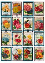 flower seed packets vintage flower seed packets deco collage sheet 16 labels