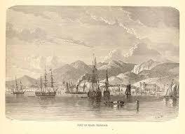 trinigenweb history