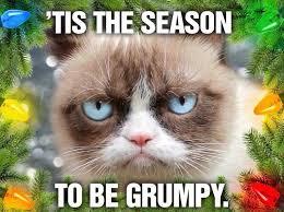 Grumpy Cat Memes Christmas - grumpy cat