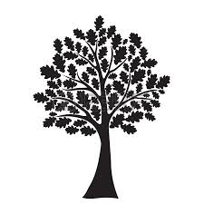 tree clip oak tree clipart black and white image clip