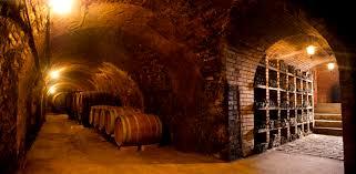 nastl riesling sparkles in austria u0027s langenlois winepleasures com