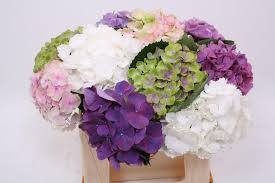 wedding flowers june hydrangea flowers trending for weddings lamberdebie s