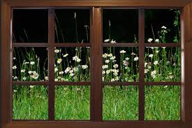 wall decal wildflower garden window viewlarge 24x36 by catsmeowart