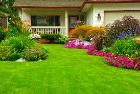 Landscaping Las Vegas by Landscaping Las Vegas Nevada Sequoia Tree Service