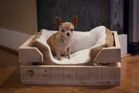 diy crafted wooden pet bed design ideas about pet life