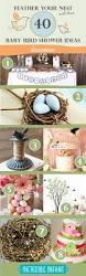 best 25 baby bird shower ideas on pinterest bird party