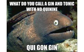 Meme Seriously - 11 memes about gin that will seriously crack you up craft gin club