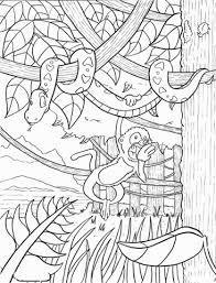 free coloring page of the rainforest rainforest coloring page free printable coloring pages