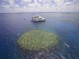 padi scuba dive courses cairns open water u0026 advanced dive course