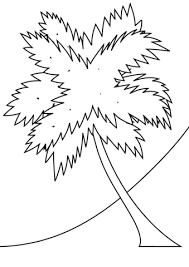 coloring pictures of a palm tree palm tree coloring pages ebestbuyvn co