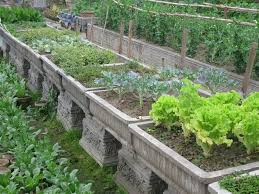 container vegetable garden style a fresh sensation container