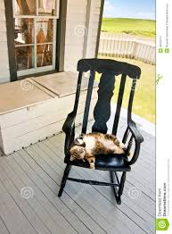 Rocking Chairs On Porch Lazy Summer Country Cat On Back Porch Rocking Chair Royalty Free