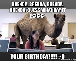 Brenda Memes - brenda brenda brenda brenda guess what day it is your