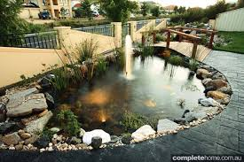 the garden pond completehome