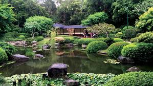 Botanical Gardens Calgary Brisbane Botanic Gardens Mount Coot Tha Where Traveler Brisbane