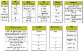 belgian shepherd weight chart rottweiler female weight chart u2013 merry dog life photo blog