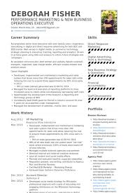 Interactive Resume Examples by Vp Marketing Resume Samples Visualcv Resume Samples Database