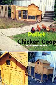 48 best chicken coops images on pinterest backyard chickens